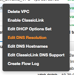Enable DNS Resolution