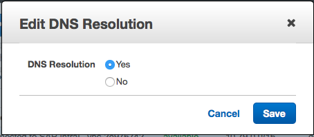 Edit DNS Resolutions